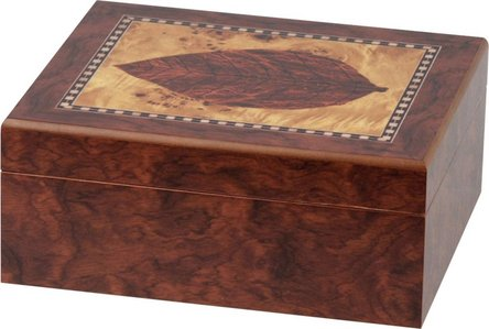 """Humidor Dekor """"Blatt"""" für ca. 25 Cigarren"""